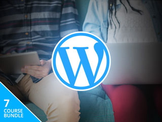 wordpress-training-deal-320