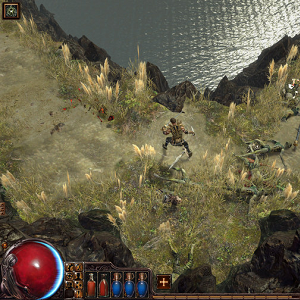 path of exile screen guy 1