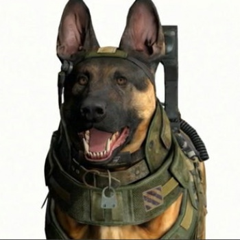 Call of Duty dog close-up