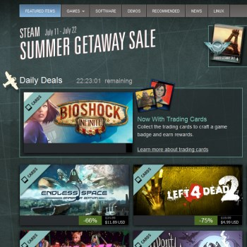 Steam Summer Sale 2013 screen