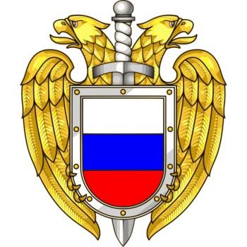 FSO emblem