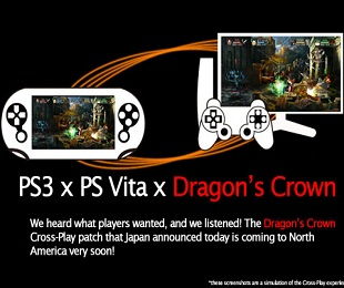 Dragon's Crown Cross Play
