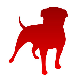 Zynga Logo - Main