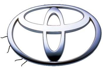 Toyota spider