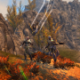 Neverwinter Offers Peek at Hunter Ranger Booster Pack