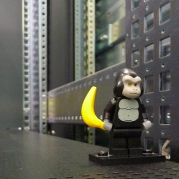 CERN LEGO Monkey - Main