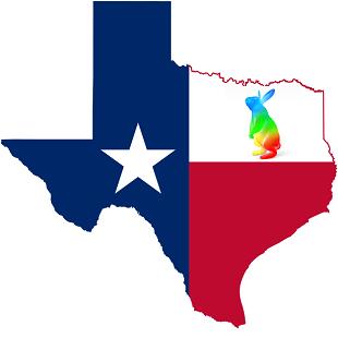 Google Fiber Texas 310x