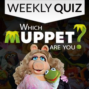 Muppets Quiz 3x3