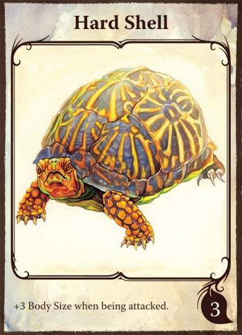 hard-shell