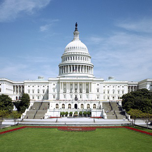 US Capitol Building 310x