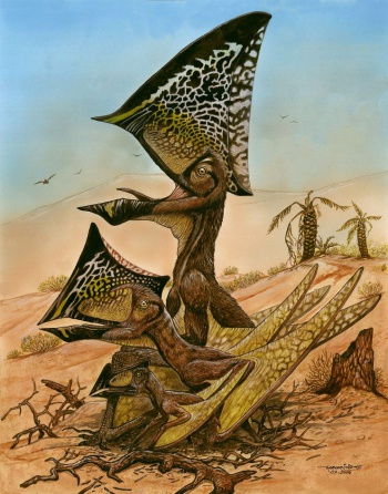 Illustration of pterosaur
