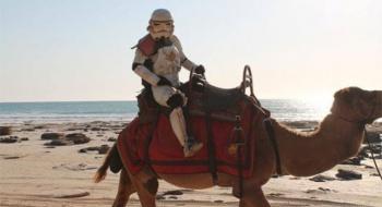 Stormtrooper Scott Loxley