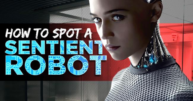Sentient Robot Ex Machina social