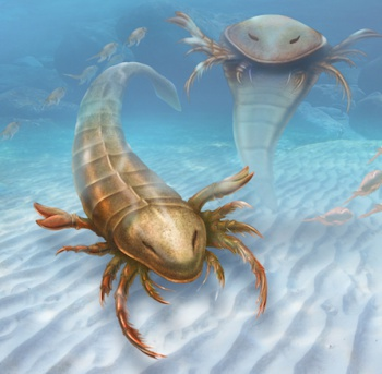 dnews-files-2015-08-giant-sea-scorpion-150831-jpg