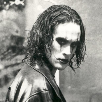the crow article