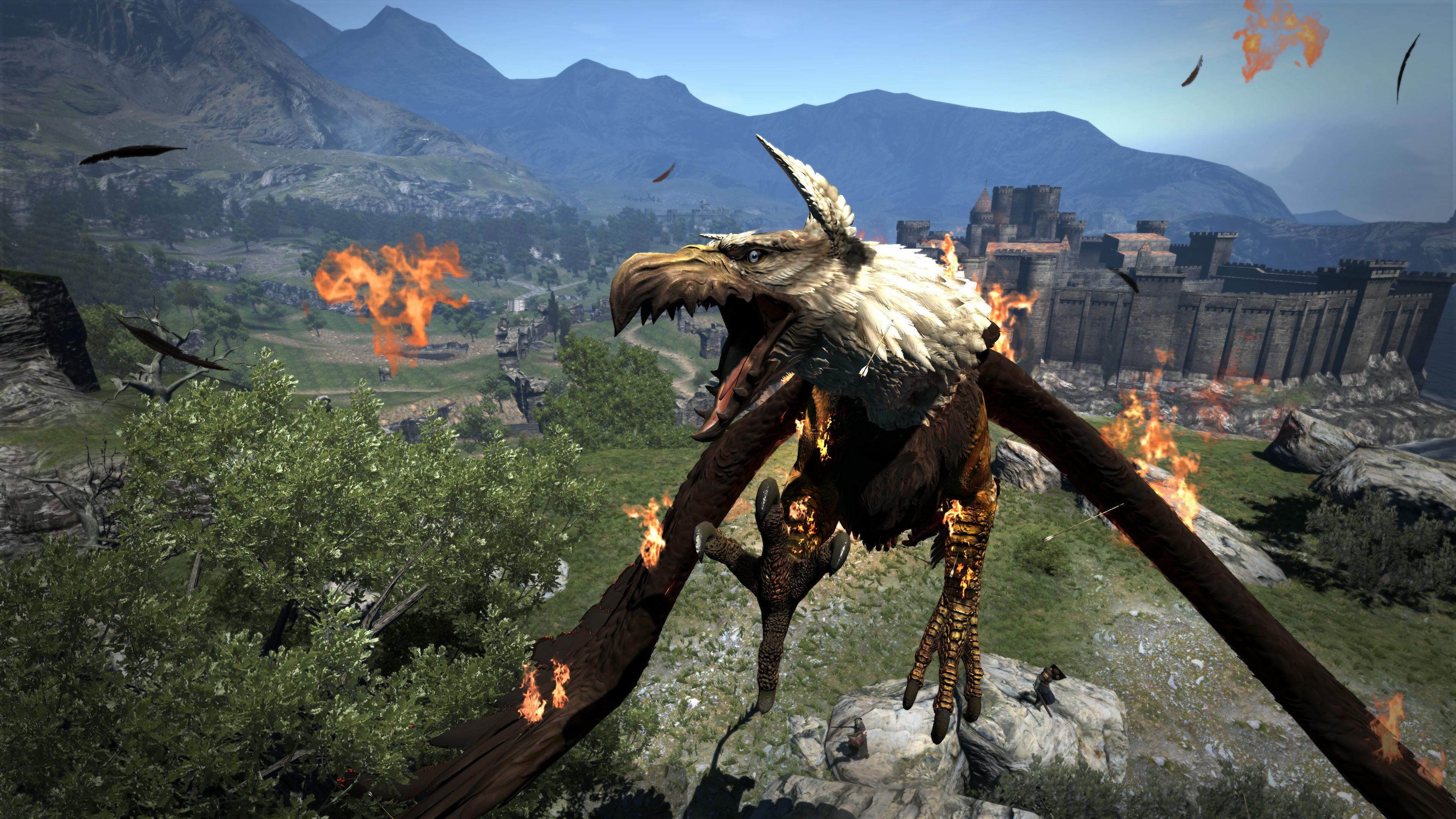 encampment dragons dogma gold idol