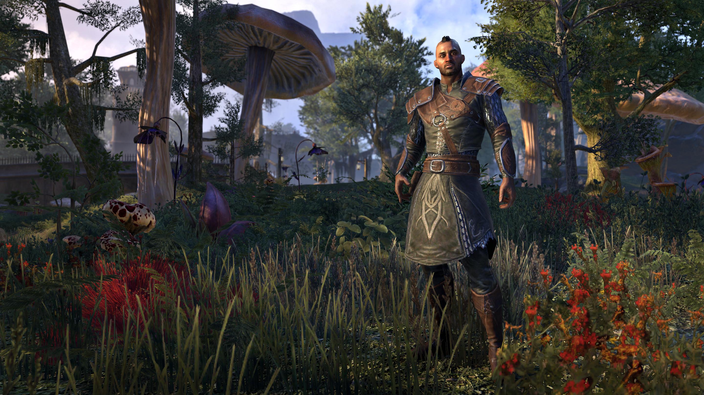 Elder Scrolls Online: Morrowind - How to Gain Levels Fast