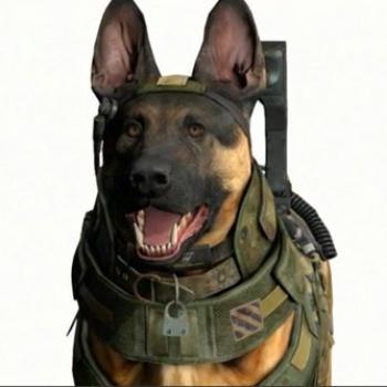 Call of Duty dog close-up