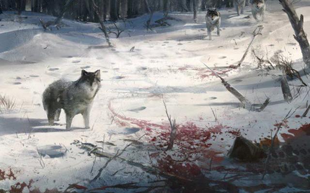 WolvesInWoods
