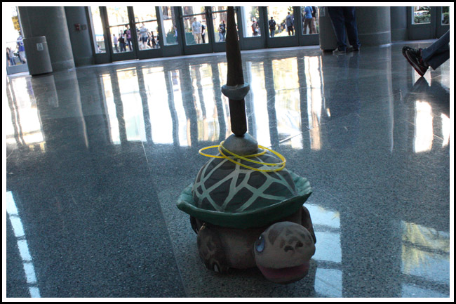 remote control turtle