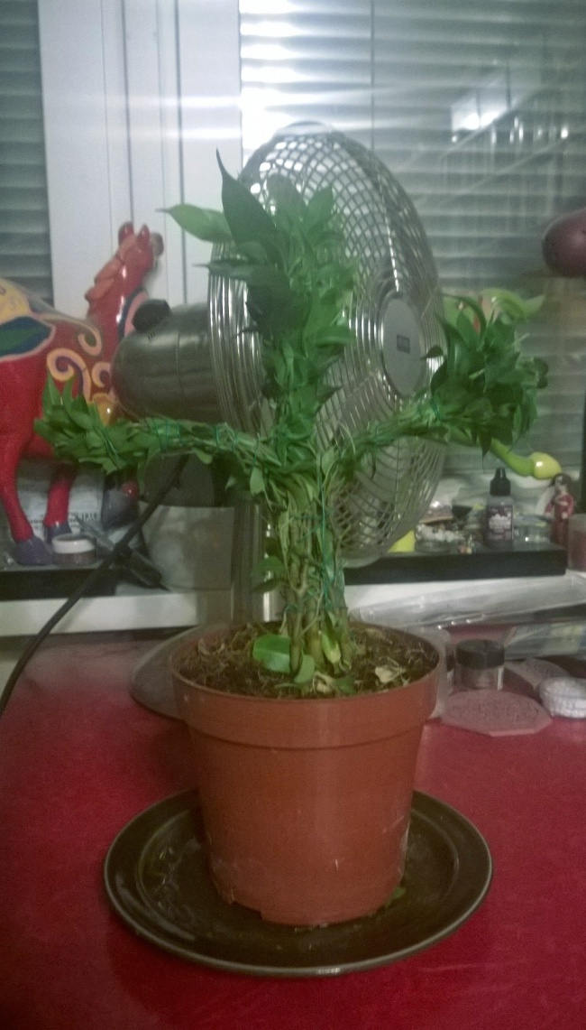 Topiary Groot