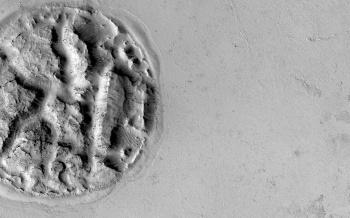 Mars Volcano Pie