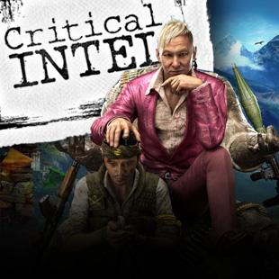 Critical Intel Himalayas