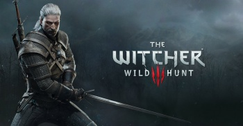 witcher 3 social